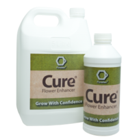 Cure *sample size* - 1 per person only