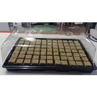 Jumbo 2 Vent Propagator Lid and Tray - 530 x 320mm - 130mm high