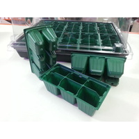 mini propagator for 6 seedlings