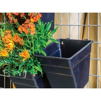 Single square Wall Garden Multihang square planters 200 x 200 x H 250 mm - single planter each