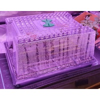 GT Single Vent Propagator package - lid plus inner gridded tray and outer solid tray