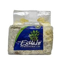 Exhale CO2 bag - suits 1 x grow light - lasts up to 6 months