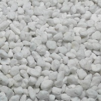Chillagoe Perlite 15L Coarse